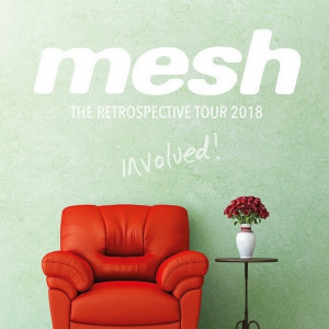 mesh involved retrospective tour 2018