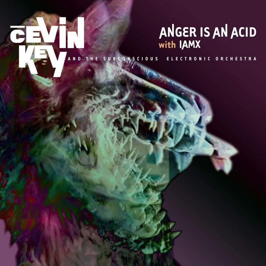 IAMX / CEVIN KEY COLLABORATION - Anger is an Acid